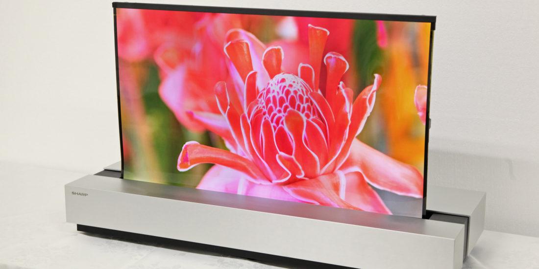 Sharp arbeitet an aufrollbarem OLED-Fernseher