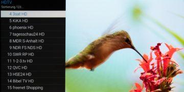 Sender sortieren im Panasonic-TV: Clevere Tipps und Tricks