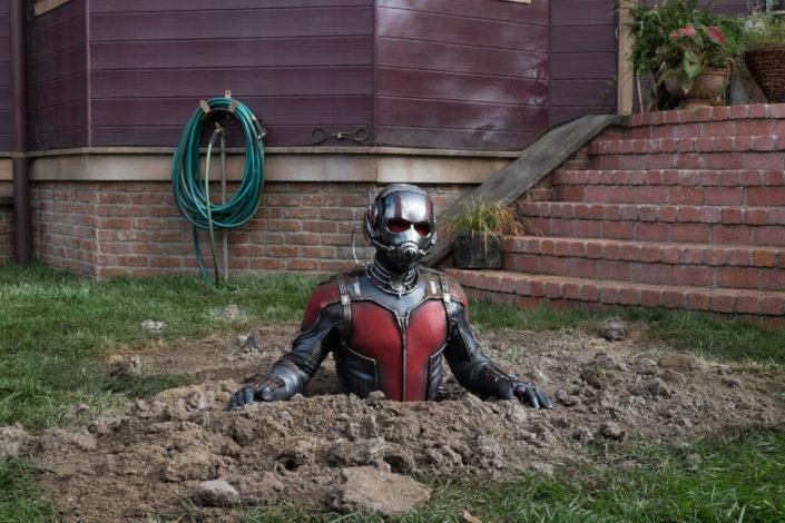 Ant-Man kann sich auf die Größe einer Ameise schrumpfen. |Bild: Disney