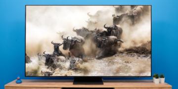 Samsung QN95A im Test: Mini-LED legt die Bild-Messlatte höher