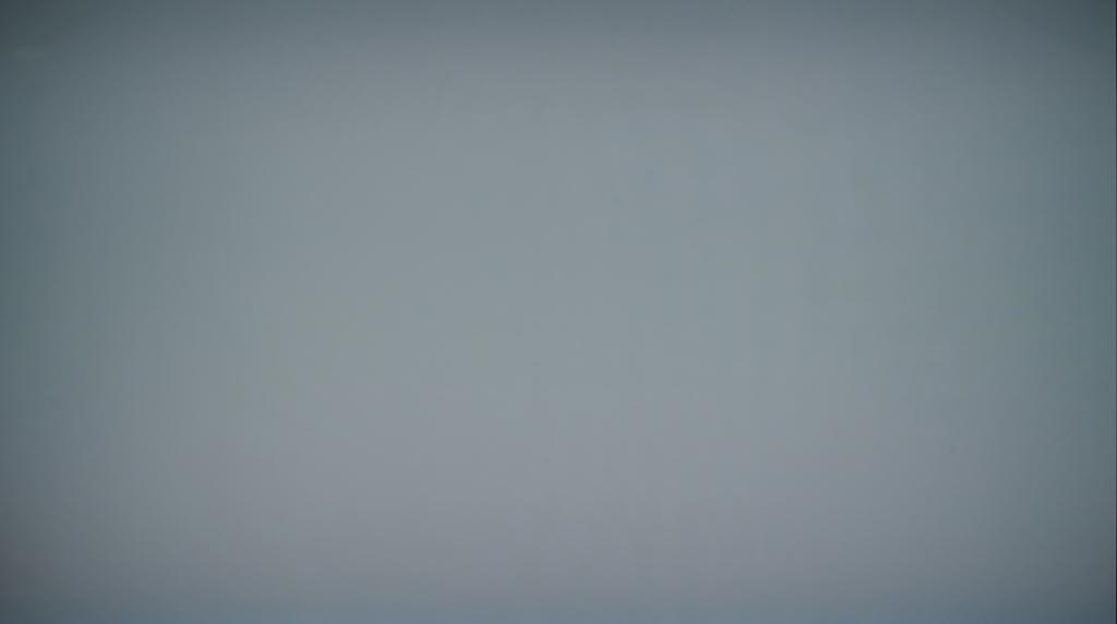 Sony A90J OLED-TV : Grau-Testbild